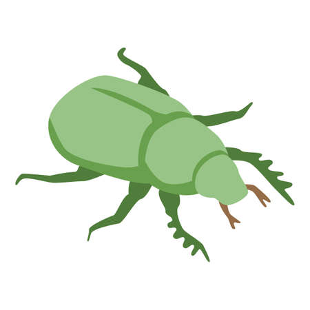 Green scarab icon, isometric style
