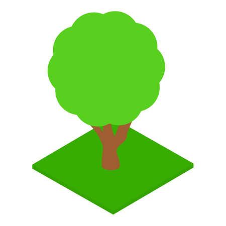 Park tree icon, isometric style