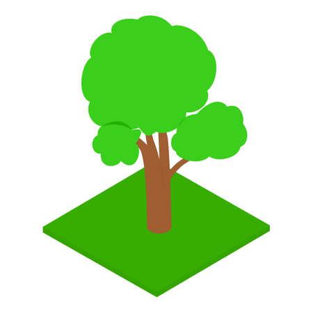 Oak tree icon, isometric style