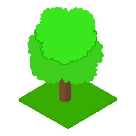 Ash tree icon, isometric style