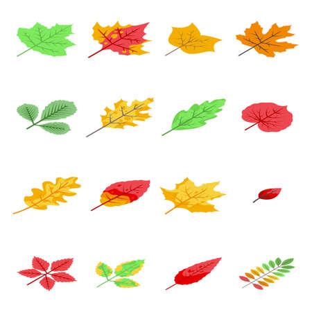 Autumn leaves icons set, isometric style Ilustração