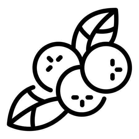 Natural rowan icon, outline style  イラスト・ベクター素材