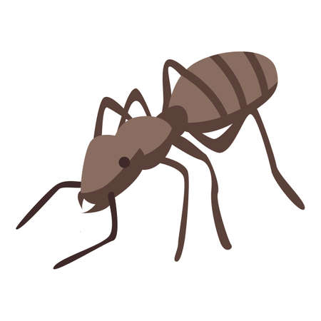 Field ant icon, isometric style