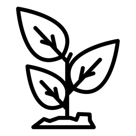 Basil aroma icon, outline style  イラスト・ベクター素材