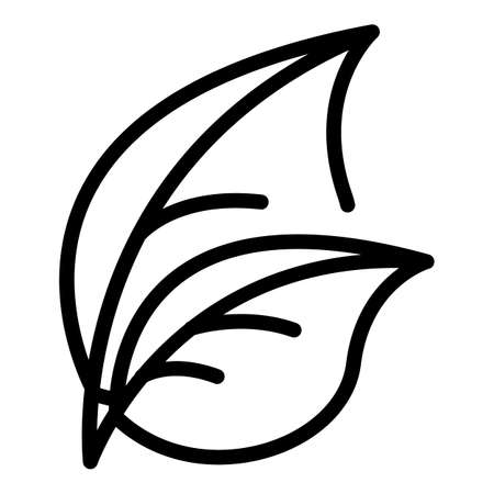 Basil herb icon, outline style