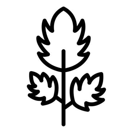 Parsley botany icon, outline style