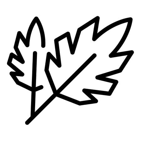 Parsley eco icon, outline style
