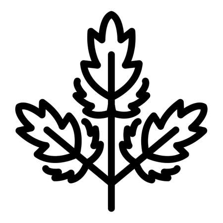 Parsley ingredient icon, outline style