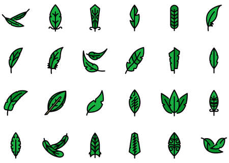 Feathers icons set vector flat