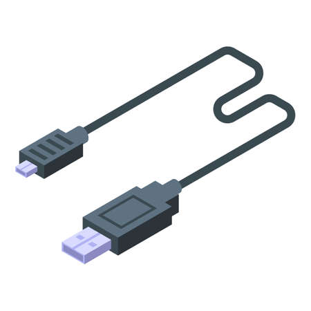 Usb cable charger icon, isometric style
