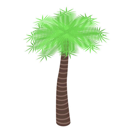 Garden palm tree icon. Isometric of garden palm tree vector icon for web design isolated on white background