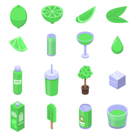 Lime icons set. Isometric set of lime icons for web design isolated on white background