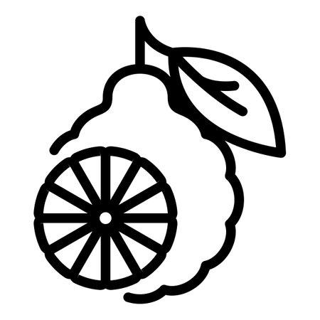 Bergamot icon, outline style