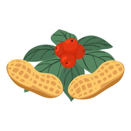 Bio food icon, isometric style