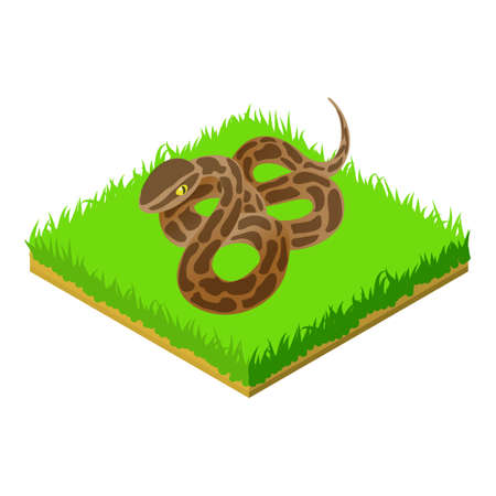 Boa constrictor icon, isometric style