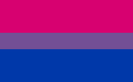 asexual: Bisexual pride flag in vector format. Illustration