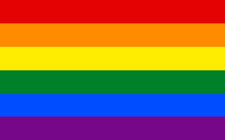 LGBT pride flag in vector format. LGBT community flag.