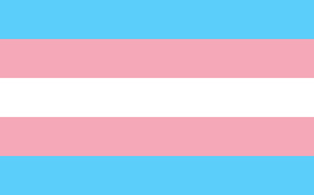 sexual: Transgender pride flag in vector format. LGBT community flag.