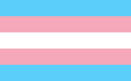 sexuality: Transgender pride flag in vector format. LGBT community flag.