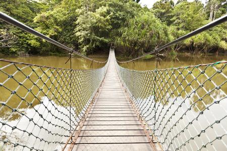 rope bridge: Rope bridge across a river in a jungle