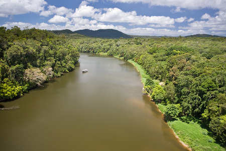 River in Daintree Rainforest in Queensland, Australia