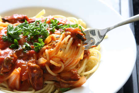 Spaghetti with tomato sauce and persil garnishings (about to taste it using a fork) Stock Photo - 2205857