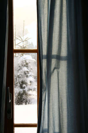 coziness: Looking at snowy pine tree from chalet window Stock Photo