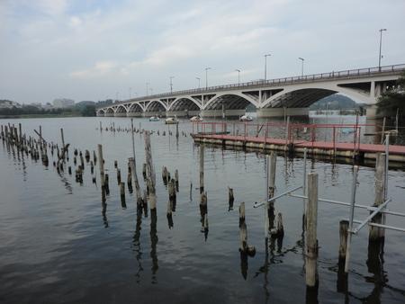roomy: A bridge over Teganuma Lake Stock Photo
