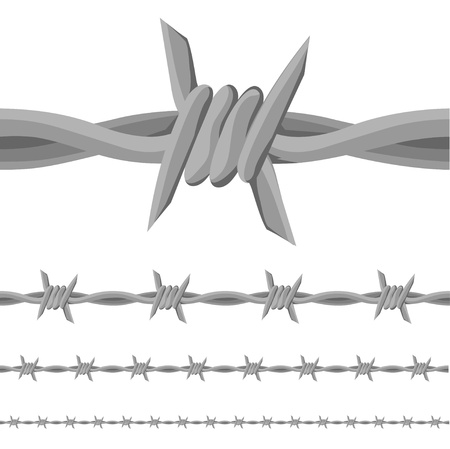 wire fence: Barb Wire