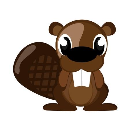 beaver tail: Beaver
