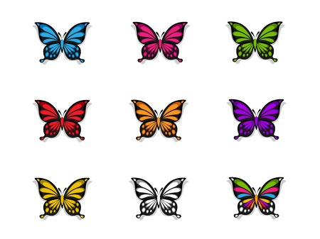 Butterfly Collection Stock Vector - 11491146