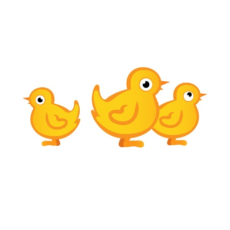 Little Chicks Vector