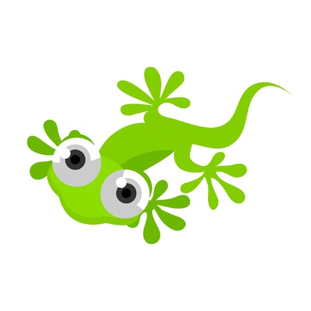 Green Gecko Vector