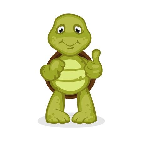Turtle Stock Vector - 17964519