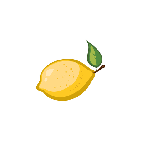 citric: Vector Fruits - Lemon
