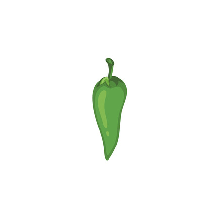 red jalapeno: Vector Vegetables - Green Chili
