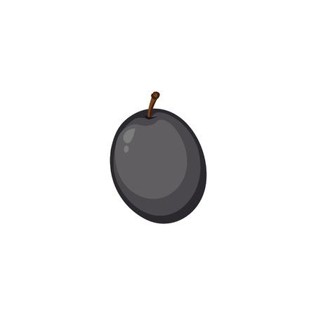 black olive: Vector Fruits - Black Olive Illustration