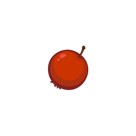 foxberry: Vector Fruits - Cranberry