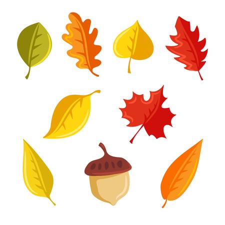Autumn leaves and acorn 矢量图像