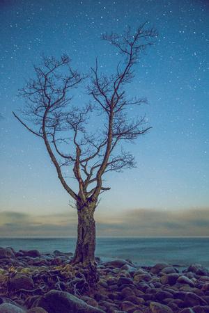 Night on the baltic sea. 2015 Stock Photo