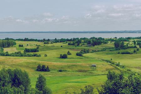 latvia: Meadow in summer tieme. 2016 Stock Photo