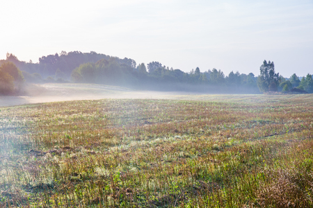 City of Kraslava, Latvia. Early morning with sunlight, meadow, trees and fog. Nature photo. Travel photo 2018. Stockfoto