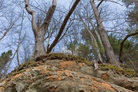 City Sigulda, Latvia. Historic sand cliffs and trees. Travel photo.