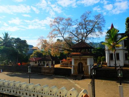kandy: Landscape at Kandy, Sri Lanka