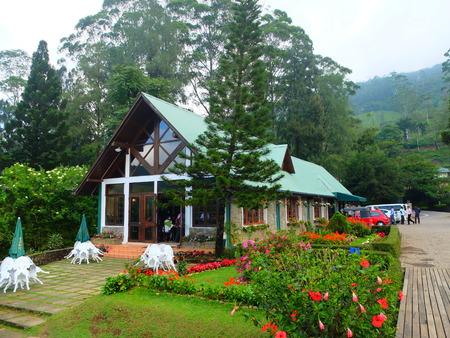 tea house: tea house Editorial