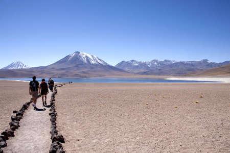 cordillera: lagunas miscanti y meniques in Atacama desert near Andes