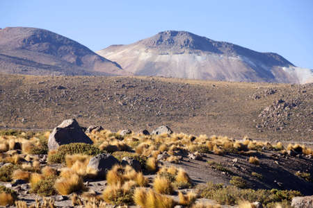 cordillera: Geysers in the Andes, Chile Stock Photo
