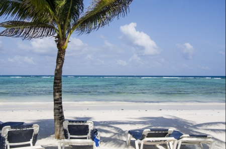 riviera maya: Playa tropical en la Riviera Maya, M�xico