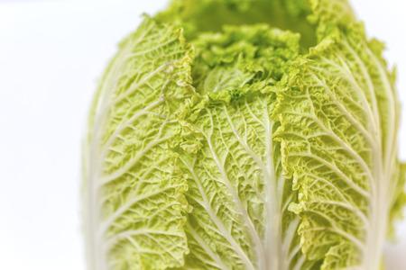 nappa: Napa cabbage on white background