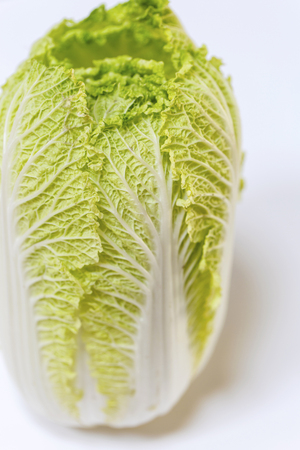 napa: Napa cabbage on white background